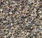 Pea Pebble